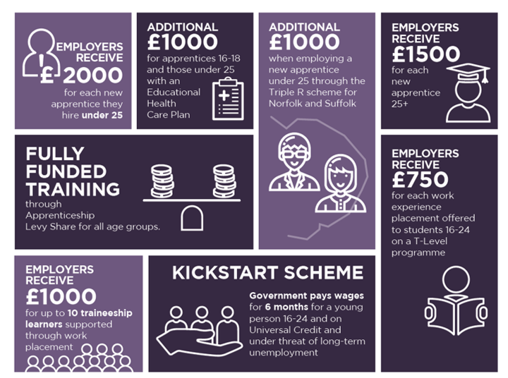 apprenticeship levy infographics