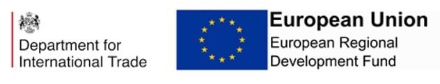 DIT & ERDF Logo